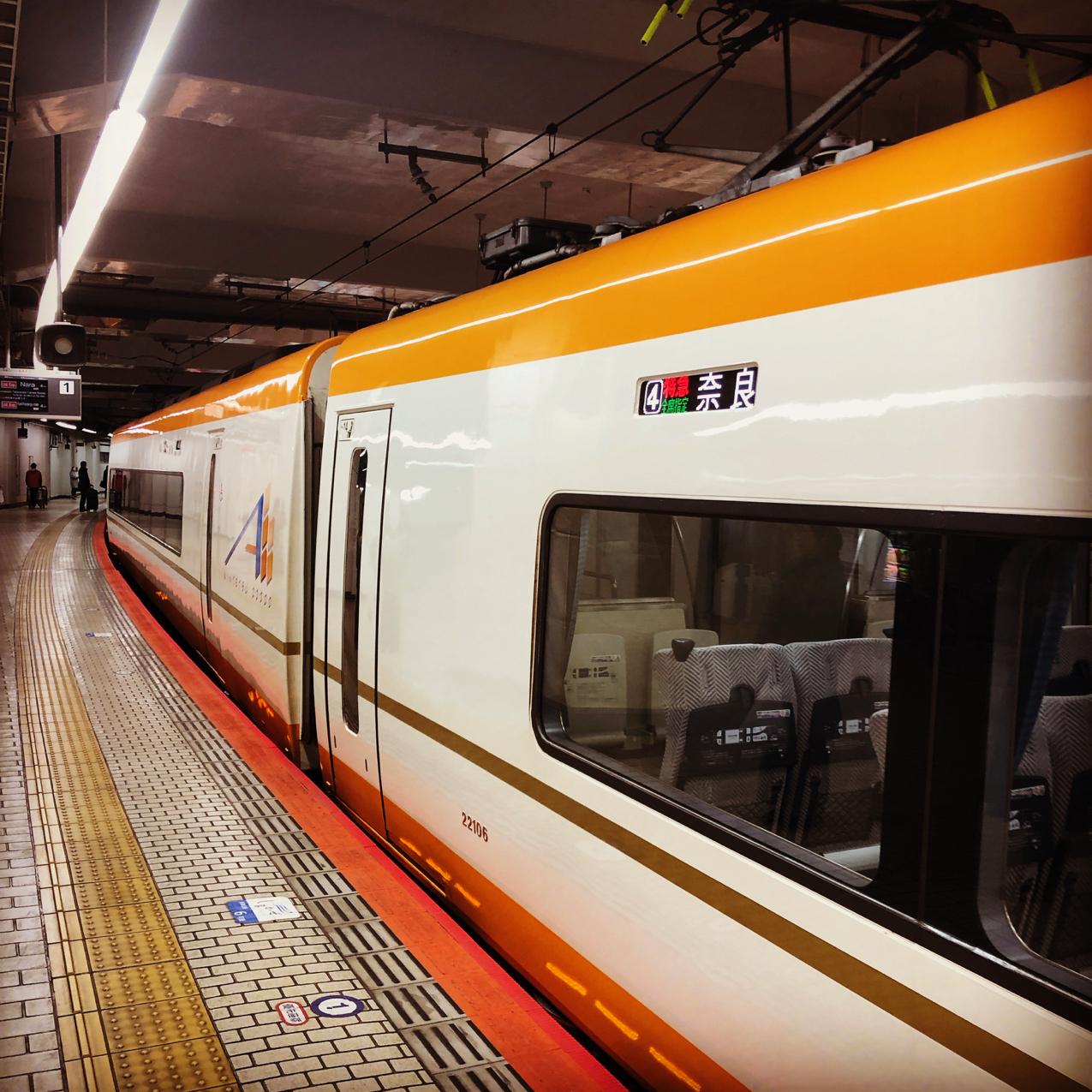 奈良市に行ったり、福井市に行ったり